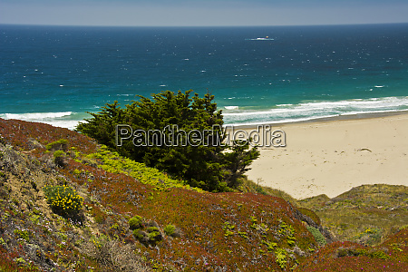 beach scene big sur california usa