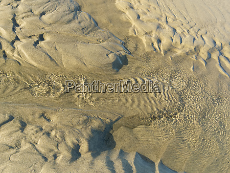 usa oregon manzanita beach sand patterns