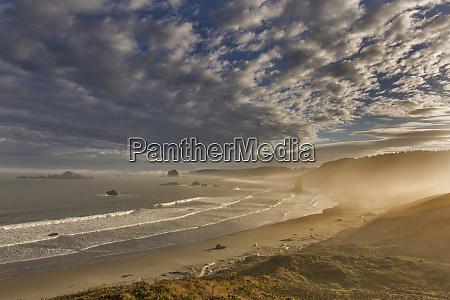 sunrise fog greets the sea stacks