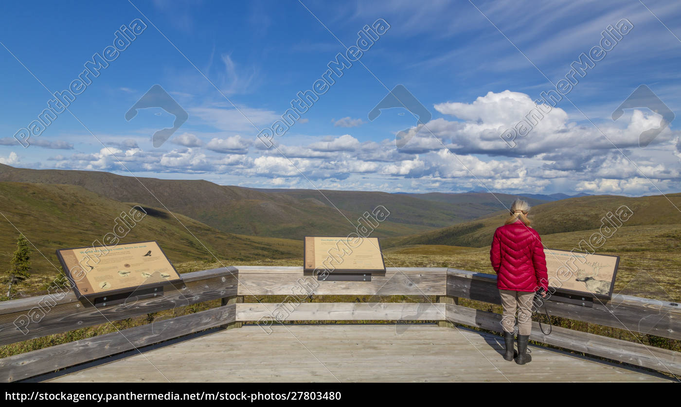 usa, , alaska, , steese, highway., woman, reading - 27803480