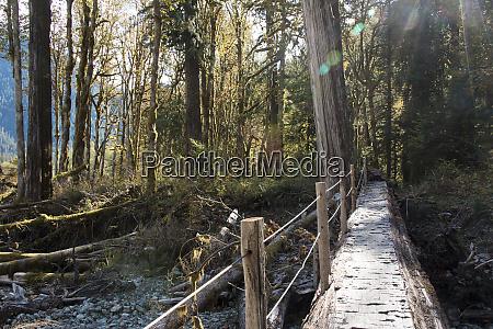 mt baker snoqualmie national forest footbridge