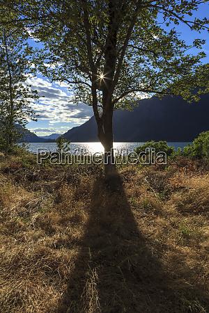 usa oregon columbia gorge national scenic