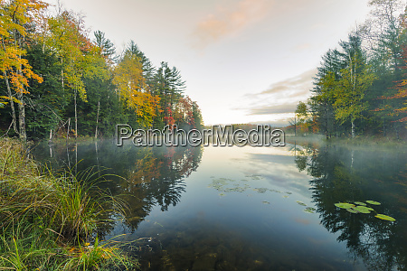 autumn colors and mist reflecting on