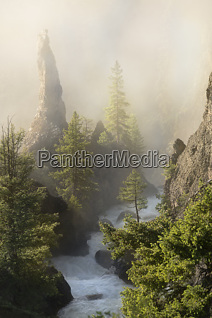 usa wyoming yellowstone national park fog