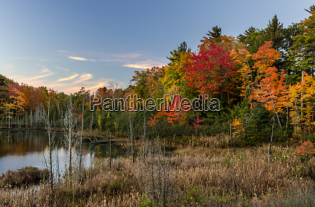 small lake with autumn color near