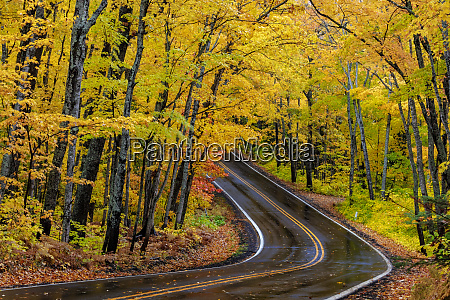 highway 41 covered roadway in autumn