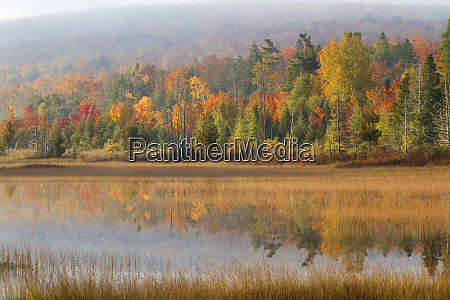 pond and fall color alger county