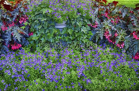 usa pennsylvania indoor garden with a
