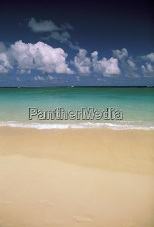 usa hawaii beach scene