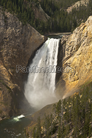 lower falls of the yellowstone lookout