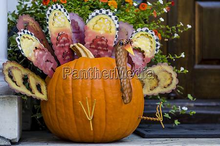 halloween pumpkin turkey display charleston south