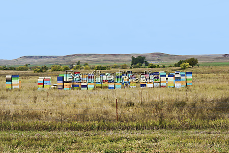usa south dakota badlands scenic colorful
