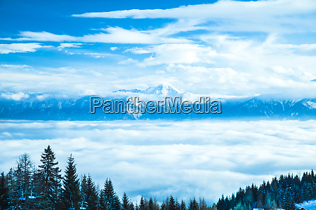 winter trees in mountains nature landscape