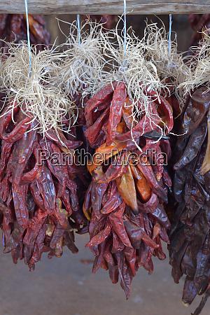 usa arizona sedona hanging dried chili