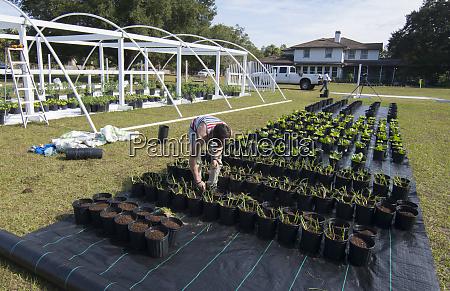 central florida organic garden construction family