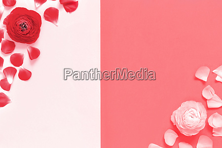 red flowers and petals on a