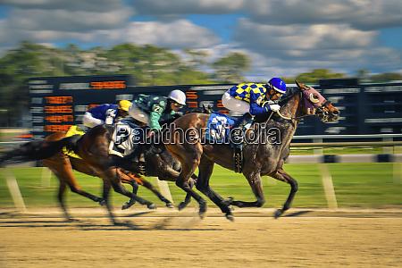 three jockeys horse racing panning photo
