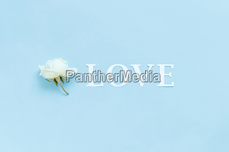 word love and flower on a