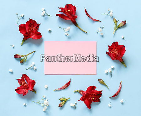 flowers, on, a, light, blue, background - 27832760