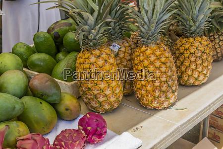 hanalei hawaii kauai dragon fruit farmers