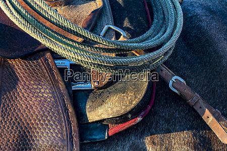 usa california parkfield v6 ranch detail
