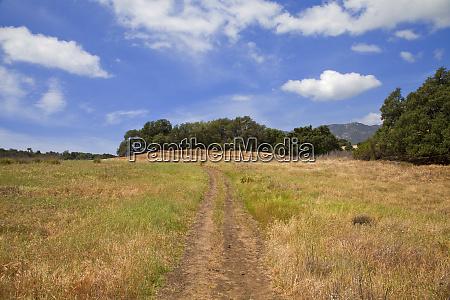 the musch trail topanga state park
