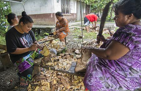 pohnpei micronesia women cutting taro root
