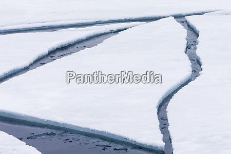 norway svalbard pack ice broken pack