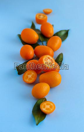 kumquat fruits on a blue background