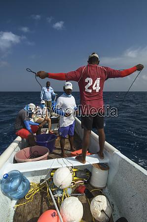 setting long lines for shark capture