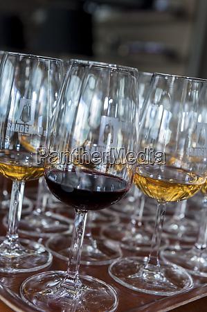 europe portugal valenca do douro tasting