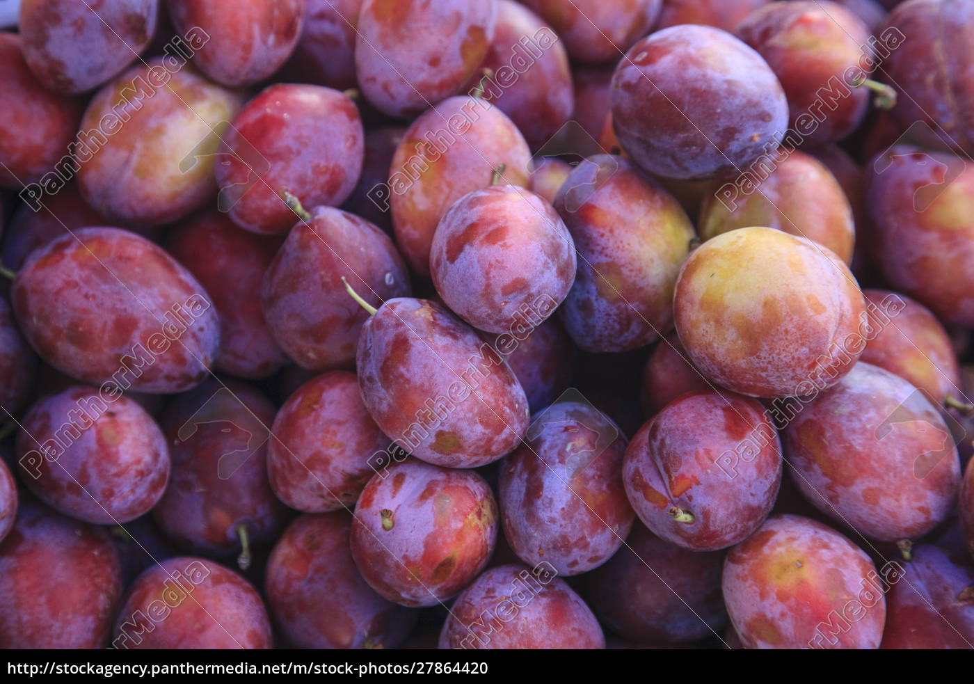 display, of, red, plums, in, the - 27864420