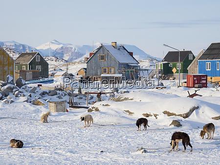 ikerasak fishing village during winter in