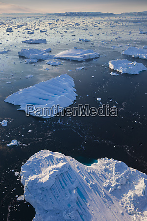 greenland disko bay ilulissat floating ice