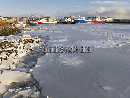 the frozen harbor of the small