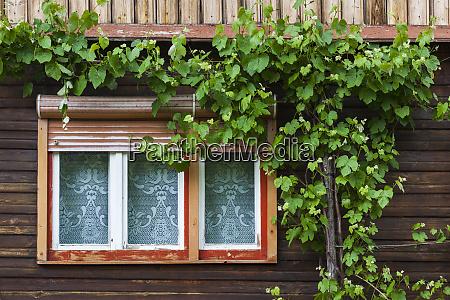 romania transylvania sibiel window detail