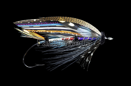 atlantic salmon fly designs fleming