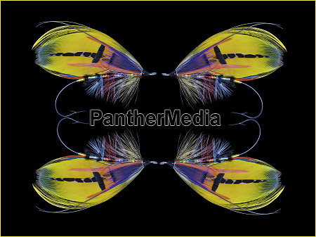 atlantic salmon fly designs shannon