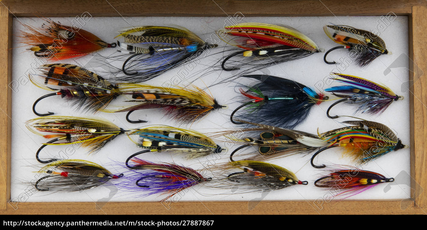 atlantic, salmon, fly, designs - 27887867