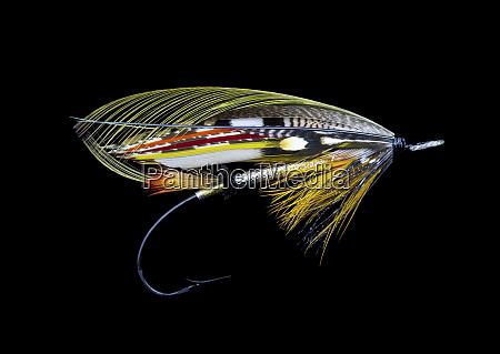 atlantic salmon fly designs dusty miller