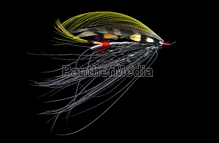 atlantic salmon fly designs pitcroy fancy