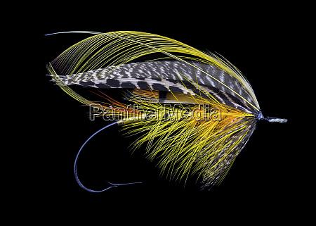 atlantic, salmon, fly, designs, 'colonel' - 27888058