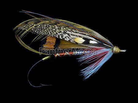 atlantic, salmon, fly, designs - 27888017
