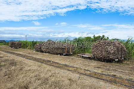 sugar cane train coral coast fiji