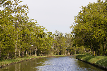 france loire spring trees lining canal