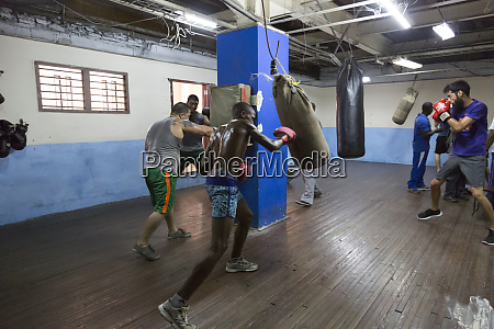 cuba havana boxers training in gym