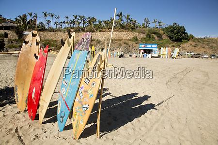 mexico baja california sur cerritos beach