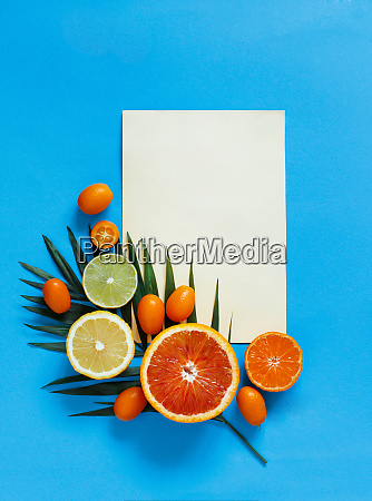 citrus fruits on a blue background