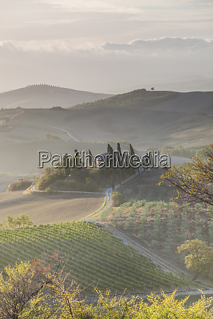 agricultural landscape val dorcia tuscany italy
