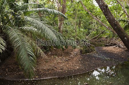 curu wildlife reserve costa rica